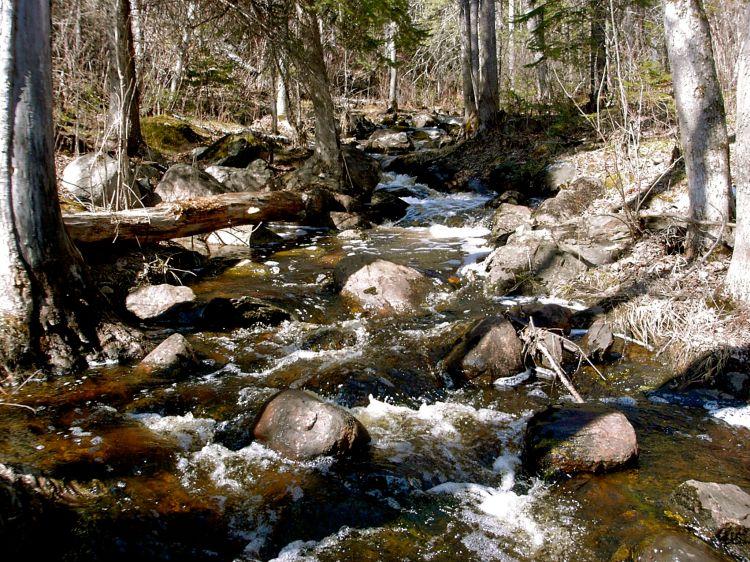 hamilton creek