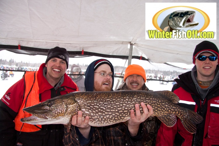 The pike that won the 2011 Falcon Lake Winter Fish-Off.
