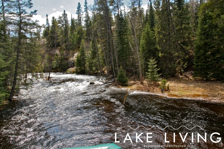 The creek that flows through the hatchery from West Hawk Lake to Caddy Lake is stocked with trout by hatchery staff. Anglers are welcome to come fly fish.