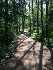 The South Whiteshell Trail.